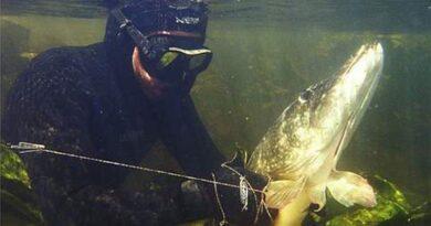 Подводная охота в Нижегородской области